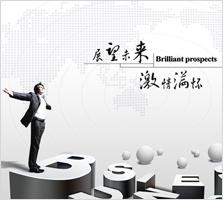 海南网络公司